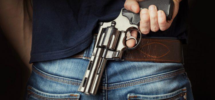 Vláda podpořila návrh Senátu na ústavní právo bránit sebe i jiné se zbraní